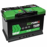 FIAMM Semi Tractie Accu 12 Volt 60Ah TR520