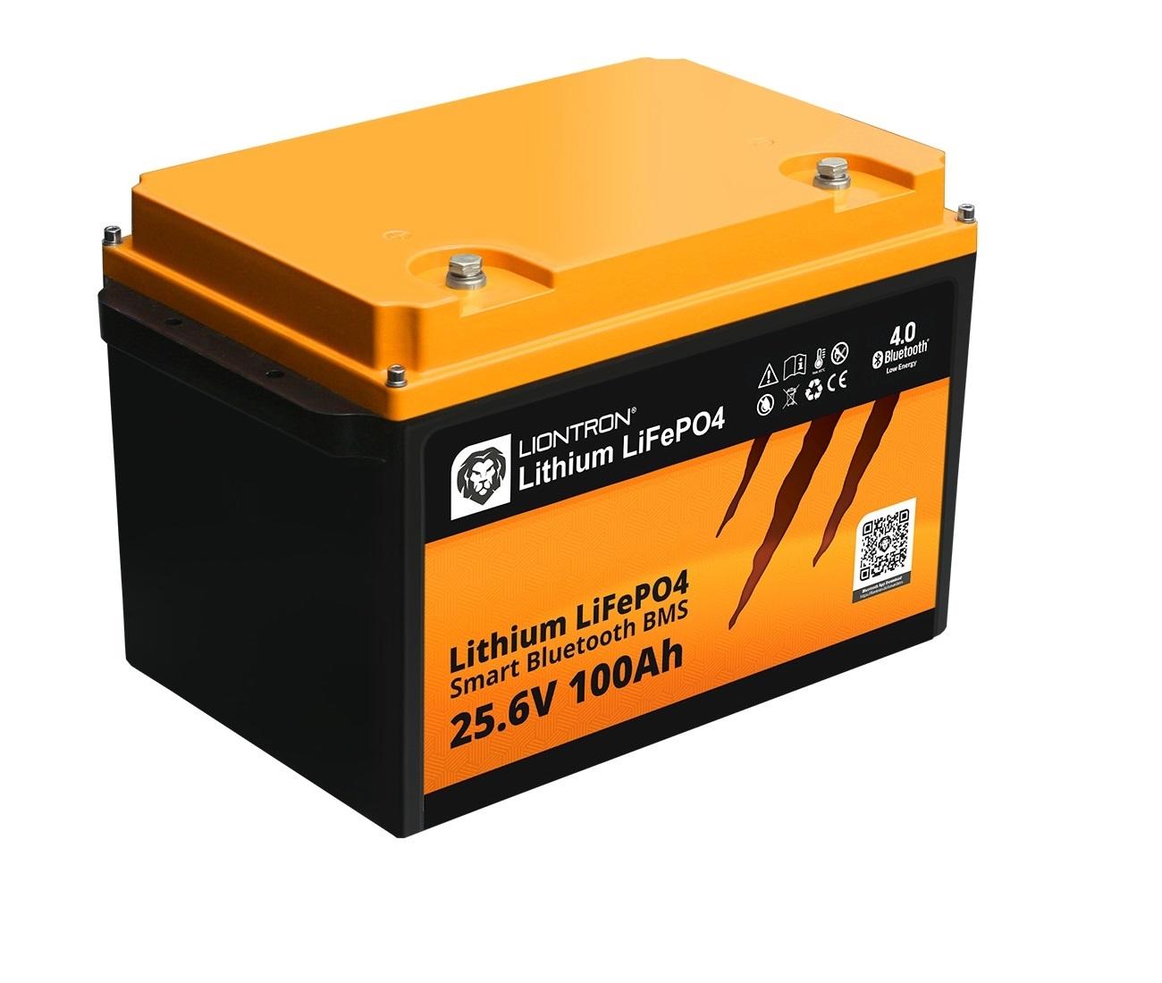 LiFePO4 Lithium Accu's