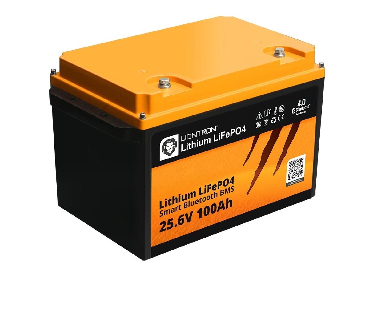 Liontron LiFePO4 Batterij   10Ah tm 300Ah